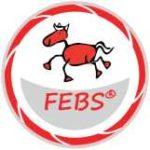Ausbildung FEBS®-Reitpädagoge - Pferd und Kind - Spiel und Spaß -