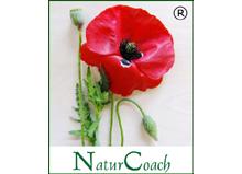 Zertifikatslehrgang NaturCoach(R)